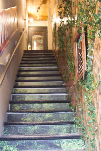 MOLLY DUFF The Vermont Cynic The stairway into WildLife shop