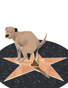 cynic dog